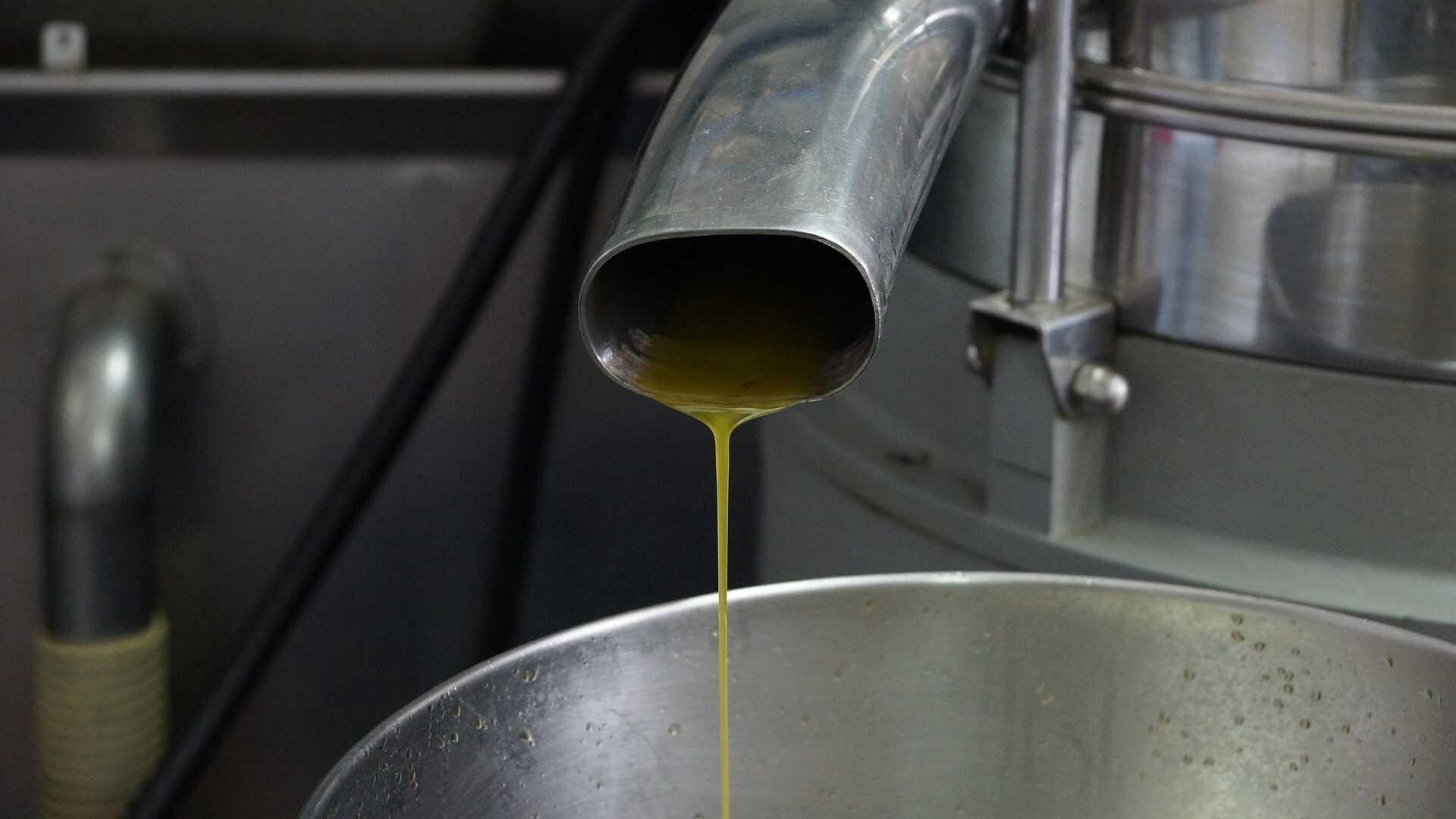 Olivoljepressning