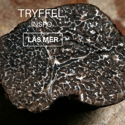 tryffel